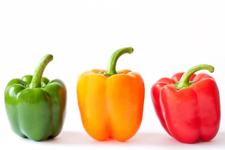 A CLOSER LOOK AT SWEET PEPPER IN NEPAL